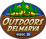 outdoors delmarva Logo